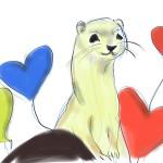 Ferret Gallery