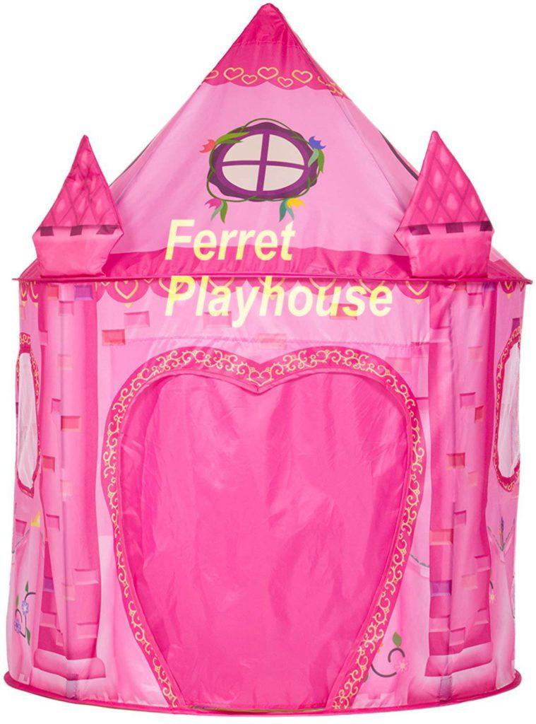 Convert Infant Gym Ferret Playground